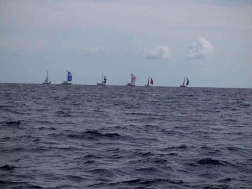 Alle diese Boote wollen in die Karibik