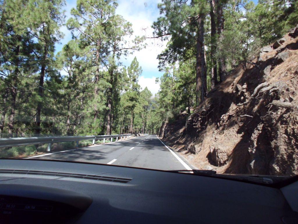 Fahrt hinauf zum El Teide im trockenen Süden...