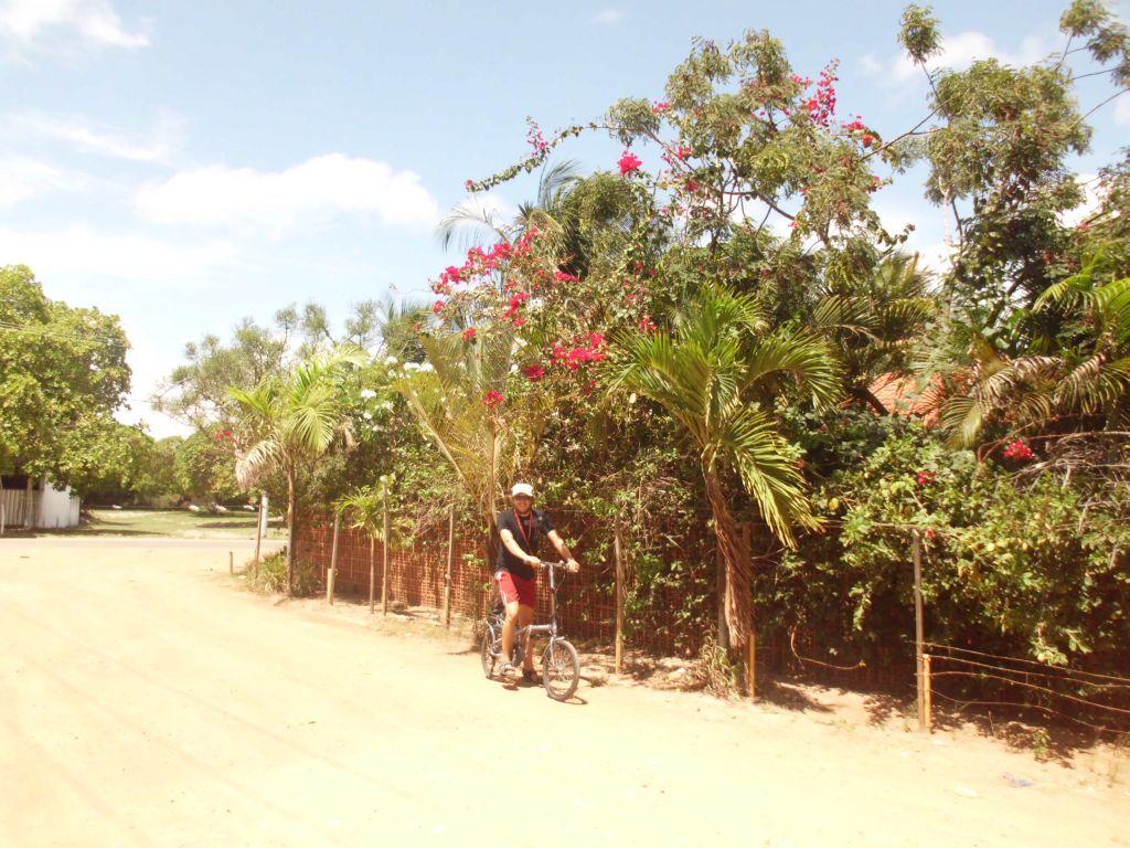 Unasphaltierte Straßen und haufenweise Blumen