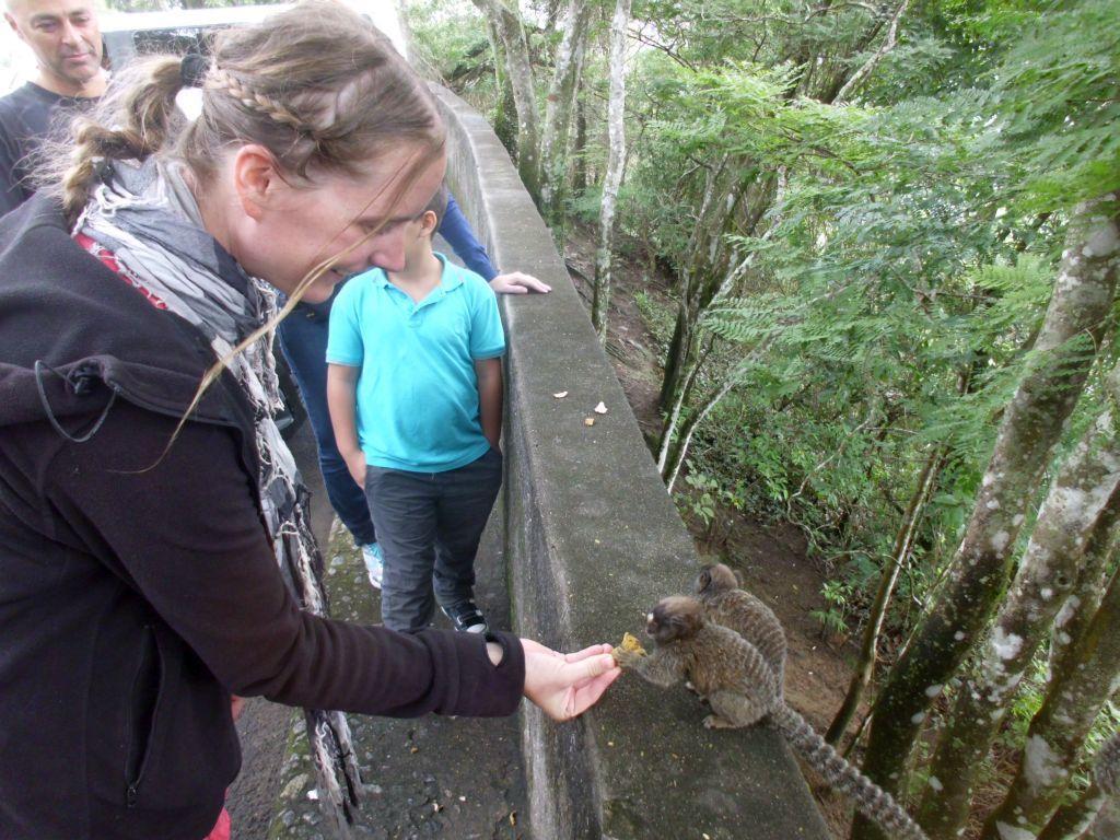 Jaqueline füttert einen Affen...