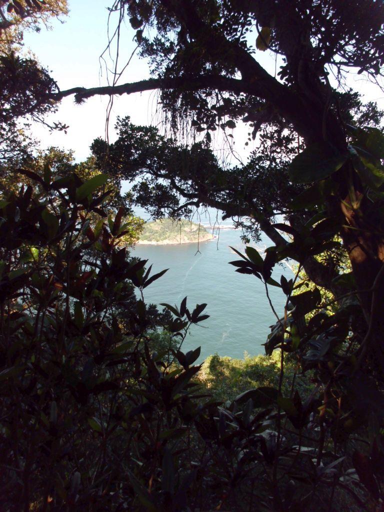 Aussicht auf die Bucht von Rio