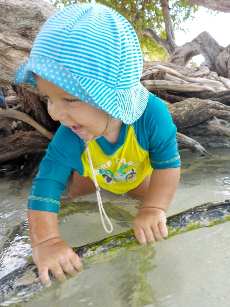 Willis Lieblingsbaum direkt am Wasser